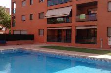 Apartament en Cambrils - 7333 Vivendi III 2 Hab, Piscina, A/C y...